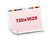 Sammel-Formen drucken  1-6 färbige Schöndrucke nutzenmontierter Standbogen Bogenformat 720x1020mm einseitig bedruckte Planobogen