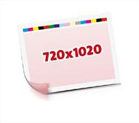 Sammel-Formen drucken  1-6 färbige Schön- & Widerdrucke nutzenmontierter Standbogen Bogenformat 720x1020mm beidseitig bedruckte Planobogen 2 Garnituren Druckplatten