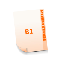 1-6 färbige Plakate  B1 (700x1000mm) beidseitige Plakate