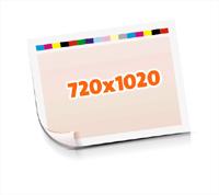 Druckformen drucken  1-6 färbige Schöndrucke nutzenmontierter Standbogen Bogenformat 720x1020mm einseitig bedruckte Plano-Druckbogen
