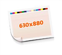 Druckformen drucken  1-6 färbige Schöndrucke nutzenmontierter Standbogen Bogenformat 630x880mm einseitig bedruckte Plano-Druckbogen