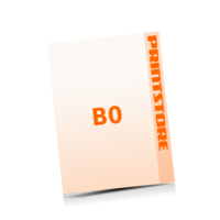 4 färbige Plakate  B0 (1000x1400mm) einseitige Plakate