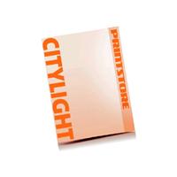4 färbige Plakate Citylight-Format 1185x1750mm einseitige Plakate (beidseitiger Konterdruck)