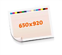 Druckformen drucken  1-6 färbige Schöndrucke nutzenmontierter Standbogen Bogenformat 650x920mm einseitig bedruckte Plano-Druckbogen