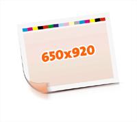 Druckformen drucken  1-6 färbige Schön- & Widerdrucke nutzenmontierter Standbogen Bogenformat 650x920mm beidseitig bedruckte Plano-Druckbogen 2 Garnituren Druckplatten