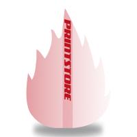 Gestanzte Flugblätter drucken Stanzwerkzeug Feuer Beidseitiger Online-Druck