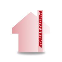 Gestanzte Flugblätter drucken Stanzwerkzeug Haus Einseitiger Online-Druck