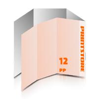 Falzflyer drucken Falzflyer drucken & perforieren  12-seitige Falzflyer  2-Bruch Wickel-Falz und  1-Bruch Parallel-Falz  1-6 färbige Falzflyer Euroskala, HKS-Sonderfarben oder Pantone-Sonderfarben beidseitig bedruckte Falzflyer