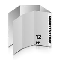 Falzflyer  12-seitige Falzflyer  2-Bruch Wickel-Falz und  1-Bruch Parallel-Falz  1-6 färbige Falzflyer Euroskala, HKS-Sonderfarben oder Pantone-Sonderfarben beidseitig bedruckte Falzflyer